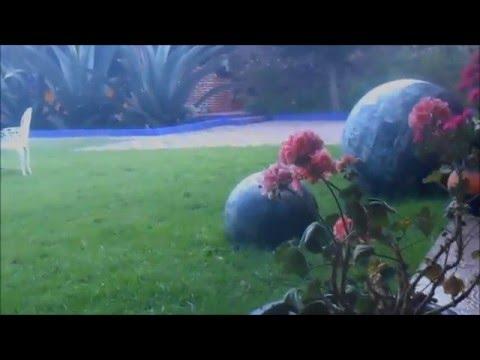 Danser au pays des Aigles - Mexique 2016