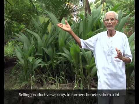 Farming - The Gandhian Way