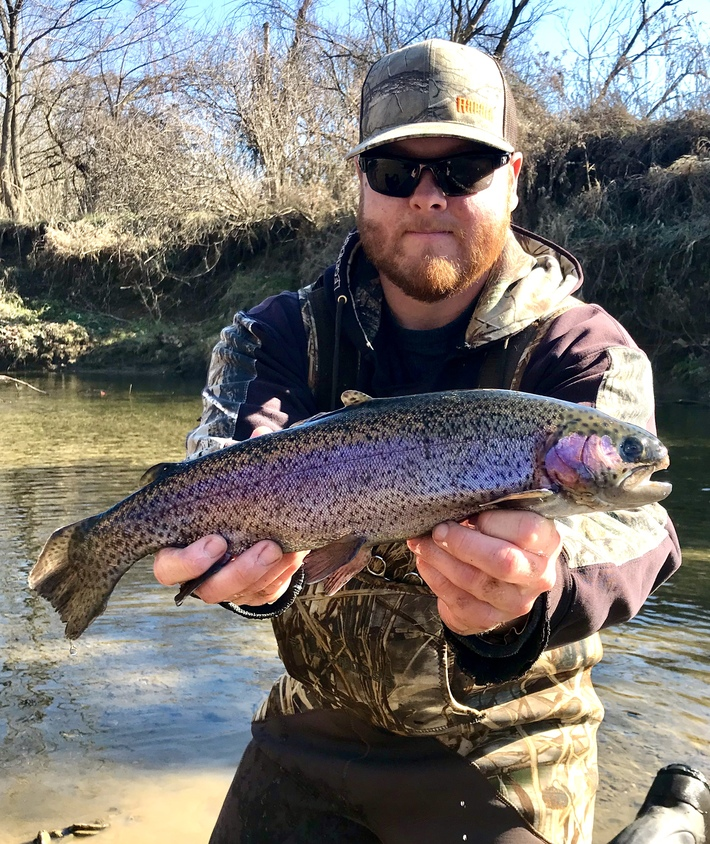 "17.5"" Rainbow Trout (11-19-19)"