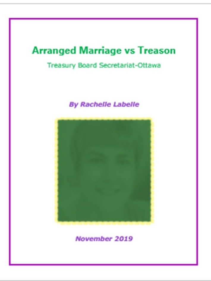 Arranged Marriage vs Treason Page Cover