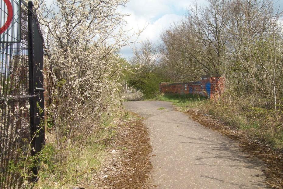 D16621 SMJ Bridge @ Towcester 13.4.19