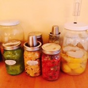Fermentation for Health:  Probiotic Drinks with Chef Alison Negrin