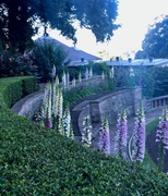‎⁨The Royal Botanic Garden
