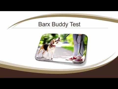 Warum Kann I Wunsch, die Barx Buddy