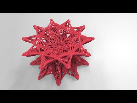 3D Maurer Rose