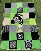 Amy's Zebra.