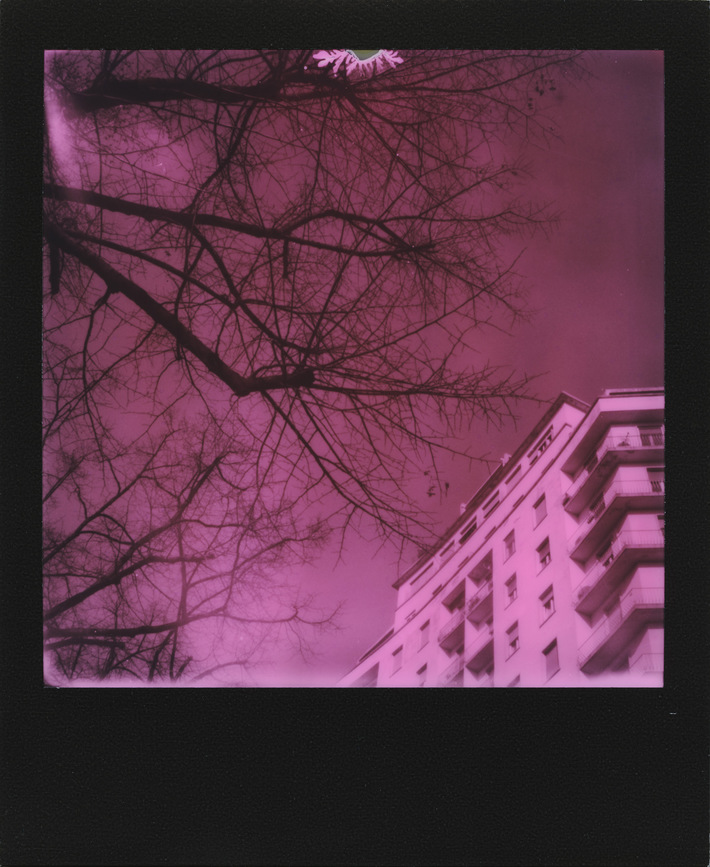 The day the sky turned pink