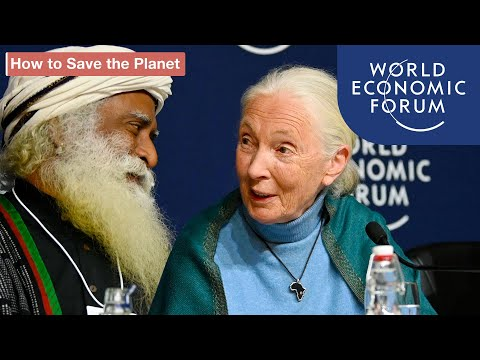 Press Conference: One Trillion Trees | DAVOS 2020