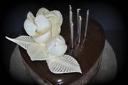 Mirror Glaze & Chocolate Flowers
