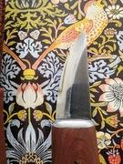 Roselli Bear Claw