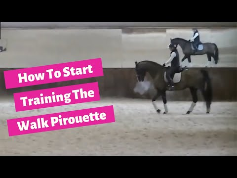 How To Start Training The Walk Pirouette In Dressage