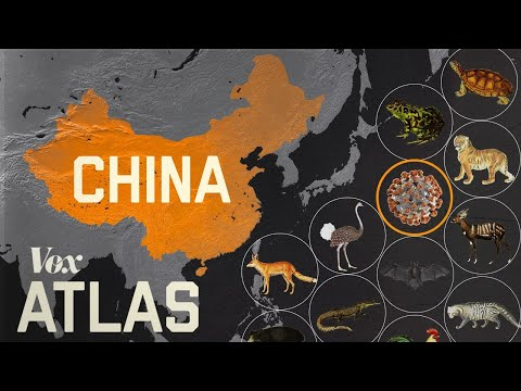 Why new diseases keep appearing in China
