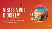 NOVETAT: RUTA ONELINE!!!  VISTES A VOL D'OCELL!!!