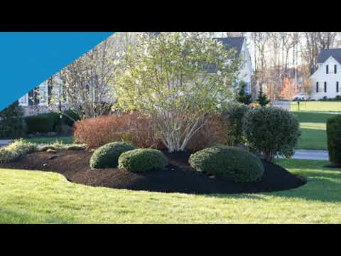 Landscaping Company Wallingford PA