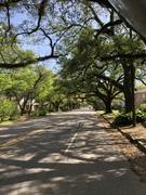 ჩემი ოცნების ქუჩა