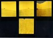 la collina fra i campi di grano