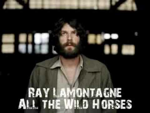 Ray Lamontagne - All The Wild Horses
