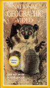 Wilds of Madagascar, the (1988)