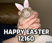 Happy Easter 12160