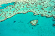 heart Shaped reef Queensland credit Tourism Whitsundays