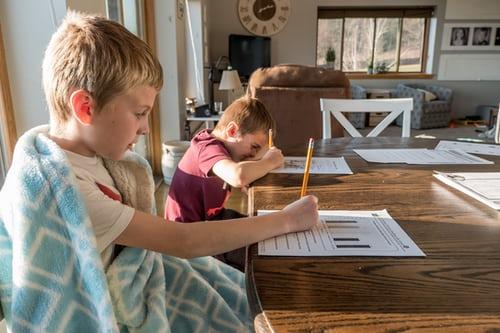 Why Do Some Children require Homework Help?