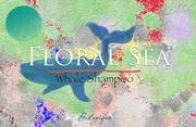 Floral Sea Whale Shampoo Final