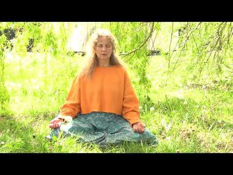 Augmenter votre fréquence vibratoire Lalitha Berton