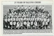 Denise Bauer Forrester-Falcon Cheerleader, 1990 reunion