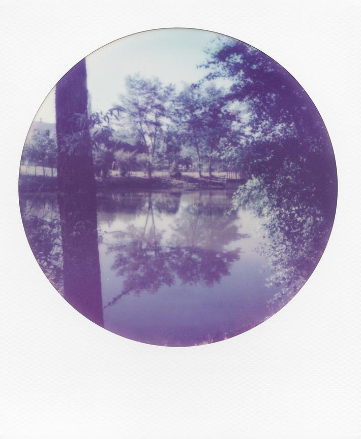 Natura allo specchio