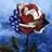 USA_kat
