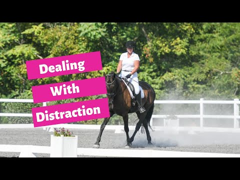 Dealing With A Distracted Dressage Horse