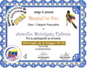 CERTIFICADOS ANTOLOGÍA IMAGEN 33 -SVAI