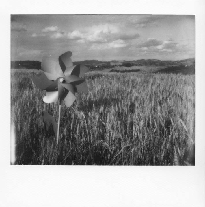 L'ombra del vento
