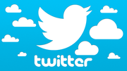 Know what you can do to establish yourself on Twitter!