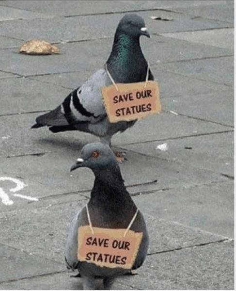 pigeons-statues