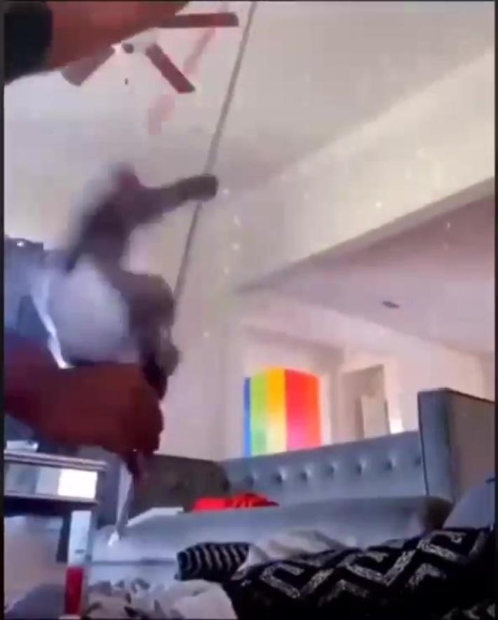 Stripper Monkey On A Pole