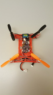 Flight of the Ladybug: A 32-bit brushed-motor flight