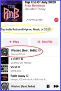 Top RnB & Hip Hop for July 2020 Wasted By Young Gifted ft. N'dia