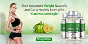 Use Garcinia Cambogia Capsules For Losing Extra Belly Fat