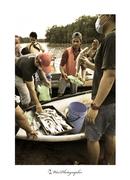 沙巴人文关怀摄影家刘富威《里卡士河生态游》