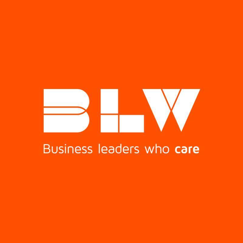 BLW eNetwork Logo