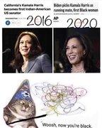 Kamala Harris - Indian-American in 2016, Black Woman in 2020