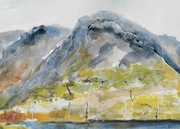 Derryclare and Pines