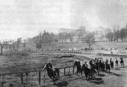 Horses in Full Gallop on Ally Pally Racecourse