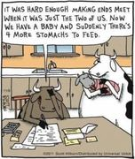 If Cows had a Family Affair,You can't Stomack that