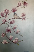 Bluejay & Chinese Magnolias
