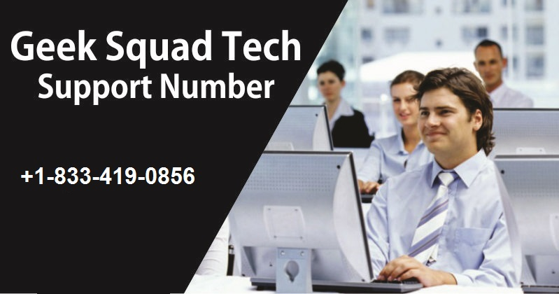 Best Buy Geek Squad Support Service in USA