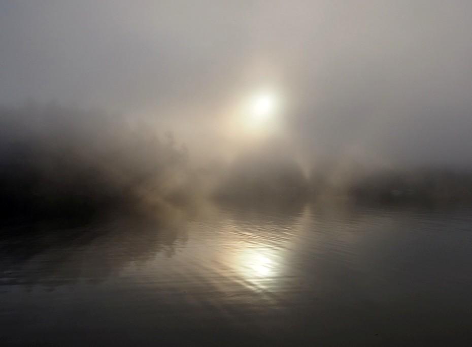 Fulford Fog