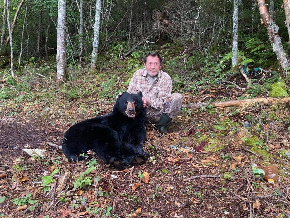 Nice bear my cousin shot on the Burin Pen