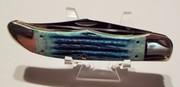 Case 6265 Blue Bone